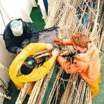 Removing the net-sounder…
