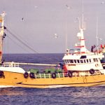 Convallaria V heading in to Peterhead after fishing herring on the Turbot Bank.