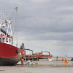 This year's Wash cockle fishery opened on 22 June with a TAC of 3,636t.