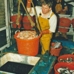 Ralston Johnston lowering another basket of prawns down to the fishroom.
