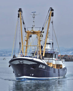 Bow view of Georgina of Ladram, showing the beamer's modern appearance and striking lines. (Photo: Alan Letcher)