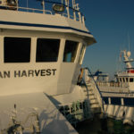 Harvester moves into position alongside Ocean Harvest to buckle up.