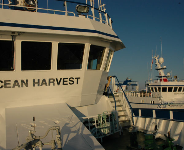 Ocean Harvest and Harvester pair-seining