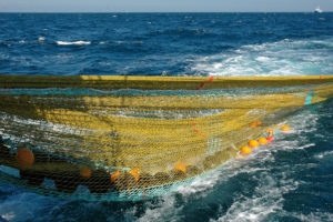 Ocean Harvest shoots away the Jackson Trawl hopper pair-seine for the first time.