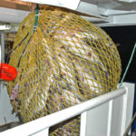 Swinging a well-filled codend onboard Ocean Harvest.