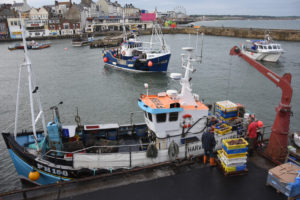 Landing shellfish on the fish quay on Bridlington's South Pier.
