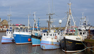 Bridlington is the hub port for the Holderness region, extending from Bridlington to the river Humber.