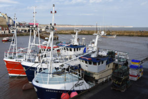 Bridlington has a fleet of modern shellfish boats fishing for lobster, crabs and whelks.