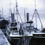 Waveflower's success encouraged her owners to build Lord Brentford and Crestflower, pictured here alongside each other in Queen's Dock in Hull, which was filled in during the 1930s.