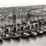 Trawlers tied up in Hull's fish dock during a deckhands' strike in 1935 over a cut in their earnings from liver oil money.