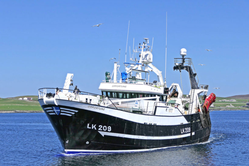 Boat of the Week: Opportune LK 209