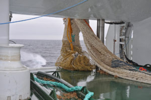 Starting to outhaul the bag of Serene's 1,100m Selstad herring trawl...