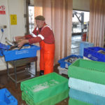 … and weighing off whiting ready for icing in the fishmarket.