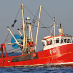 Malcolm Ward and Tom Sheader's trawler Provider towing south in the late afternoon.