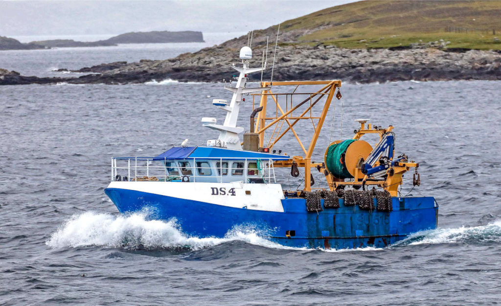 Kestrel, the recent addition to the Shetland fleet, steaming to scallop grounds off Whalsay. (Ivan Reid)
