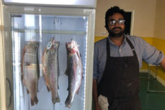 Aarik Persaud in the new Cormacks Seafood shop with his dry-aging fridge.