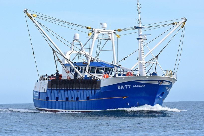 Boat of the week: Alcedo BA 77