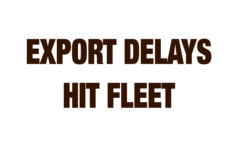 Export delays hit fleet