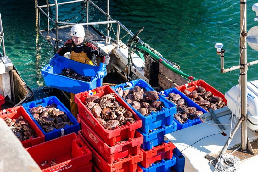NFFO: 'FSP spending must benefit fishers'