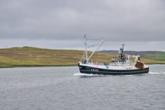 No deal with Norway hits whitefish fleet