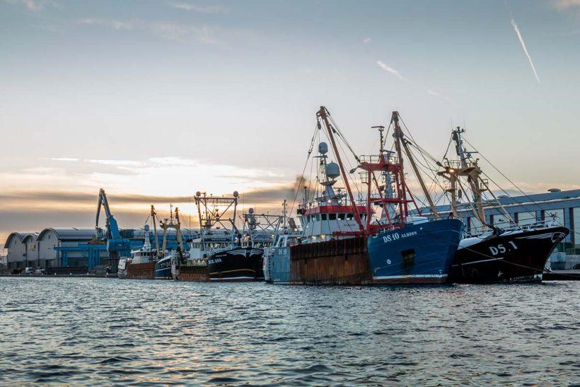 EU fleet profitable but Covid hits bottom line