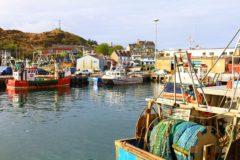 Seafish strategic review consultation closes this week