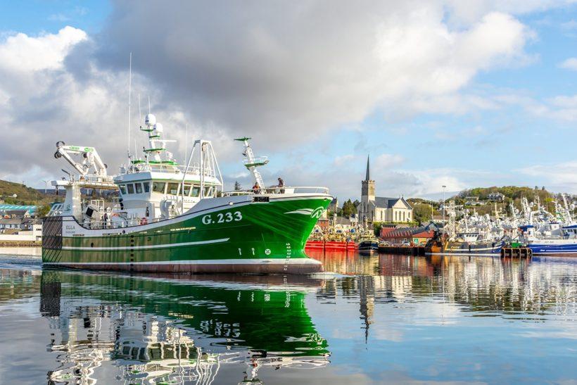 Ella: Irish Yard Delivers Compact Pelagic Vessel To Killybegs Onwer