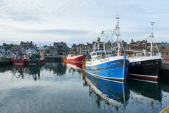 NGOs call for more cuts in fishing to save climate