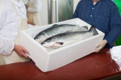 UK seafood supply
