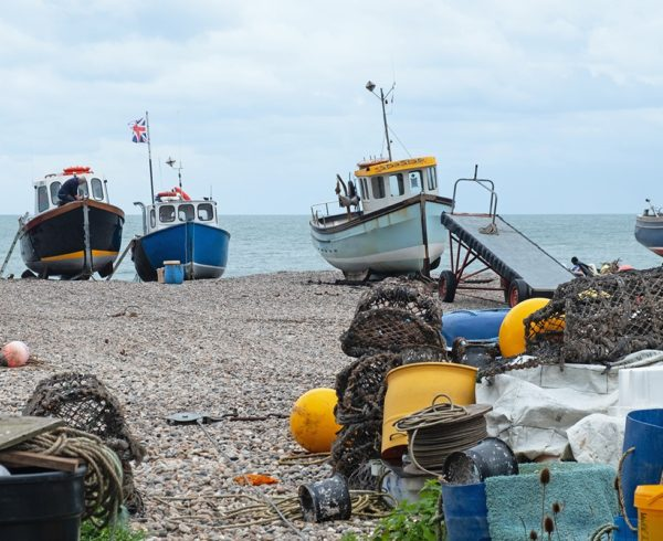 Groups join forces to highlight inshore crisis