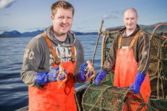 Working group sets out improvements for Scots Nephrops sector
